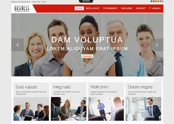 Td Business - Joomla template