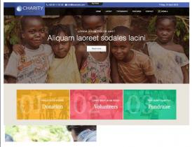 Td Charity - Joomla template