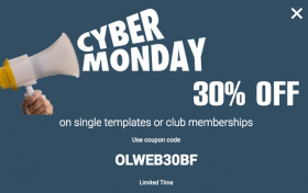Cyber week 30% off- Olwebdesign