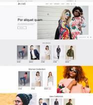 Ol_Store - Joomla Template