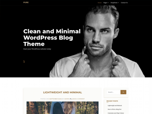 Pure - Clean and Minimal WordPress Blog Theme