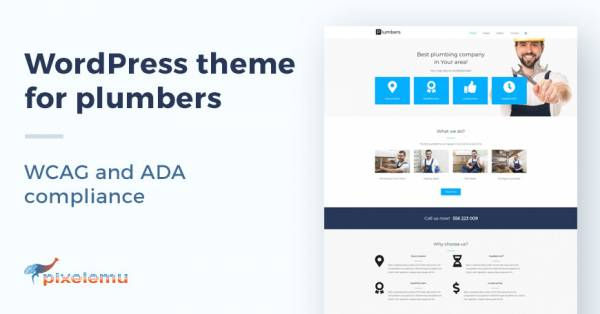 WCAG and ADA WordPress theme for business website
