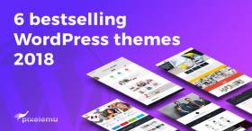 2018's best selling WCAG and ADA WordPress themes from PixelEmu
