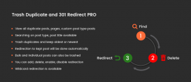 Trash Duplicate and 301 Redirect PRO
