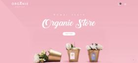 Organic Store Magento Theme