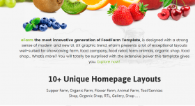Best WordPress Theme for Organic Sotre, Farm & Food