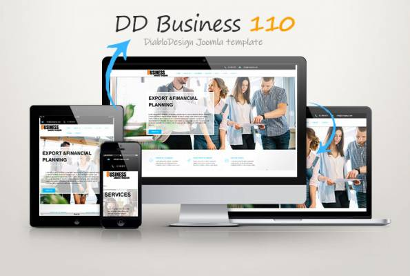 DD BUSINESS 110