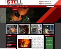 DD Stell 65