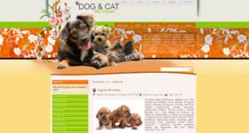 Dog and Cat - Free Animal Template for Joomla 2.5 and Joomla 3.0 by DiabloDesign